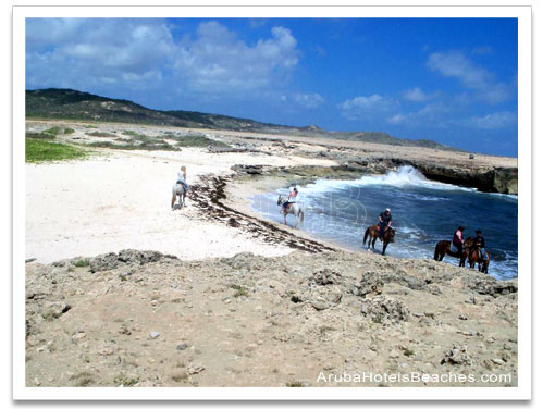 Aruba_Horseback_Riding1