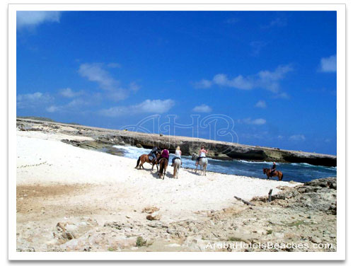 Aruba_Horseback_Riding2