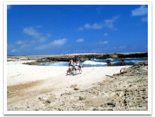 Aruba_Horseback_Riding3
